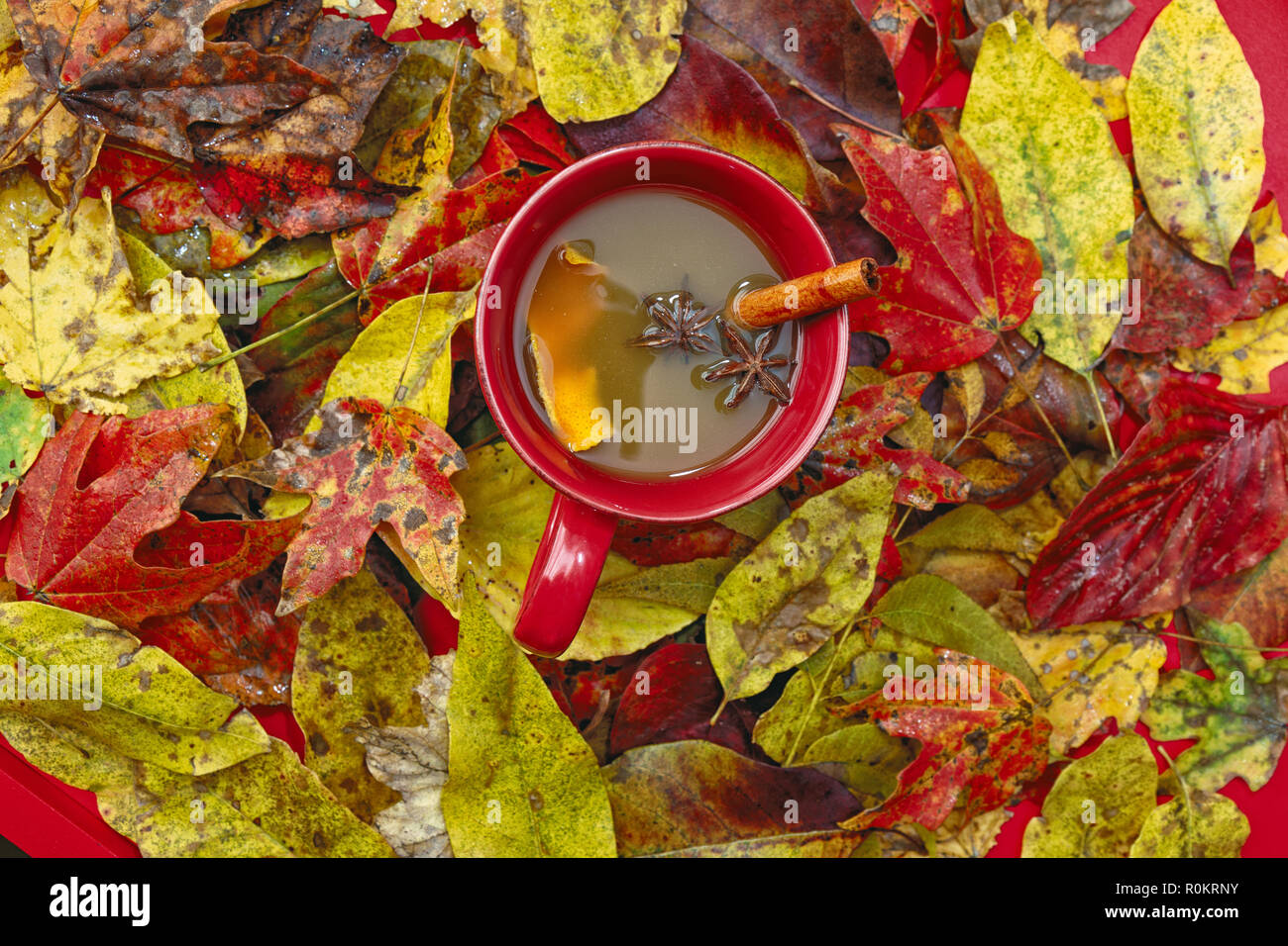 Red, Yellow and Orange Autumn Leaves for Background. Stock Photo