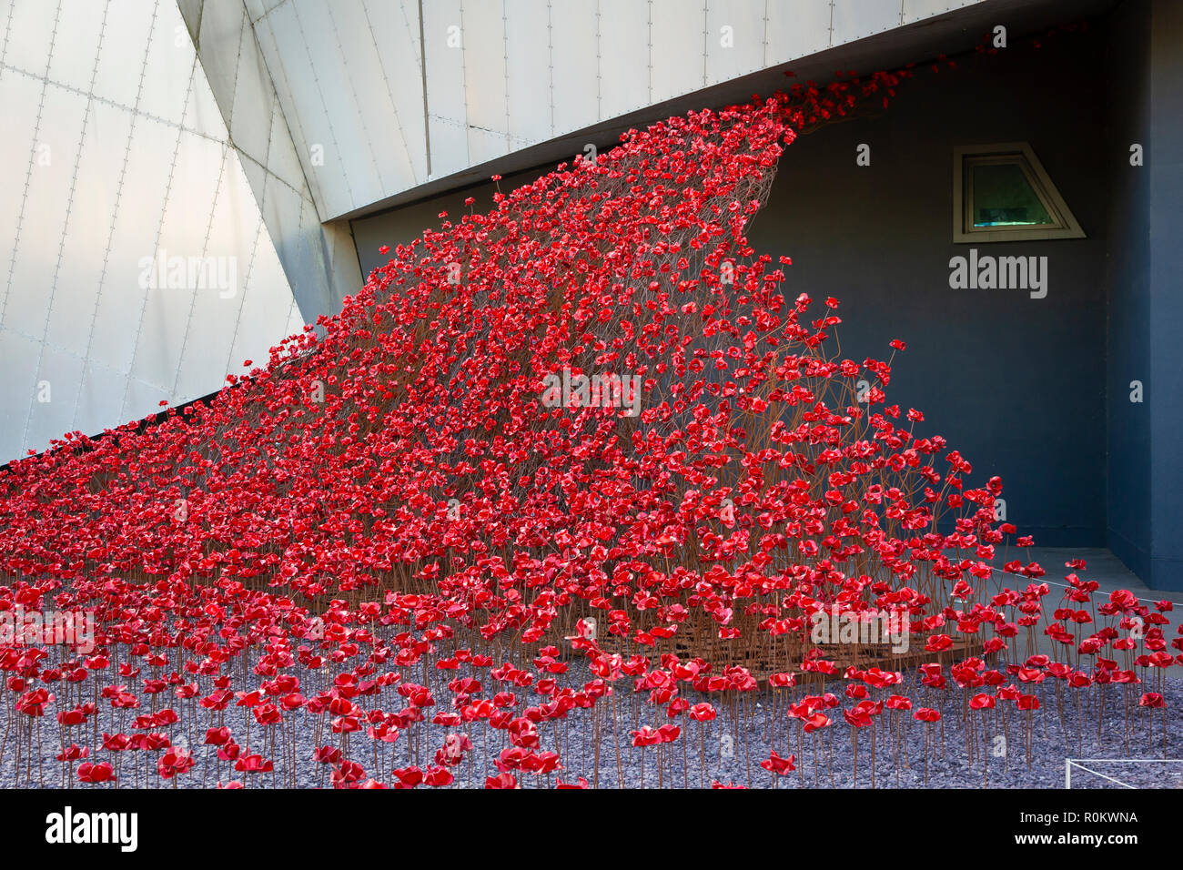 Poppies Wave, by Paul Cummins and Tom Piper. pat of The Poppies Tour at the Imperial War Museum North in Salford Quays. - Stock Image