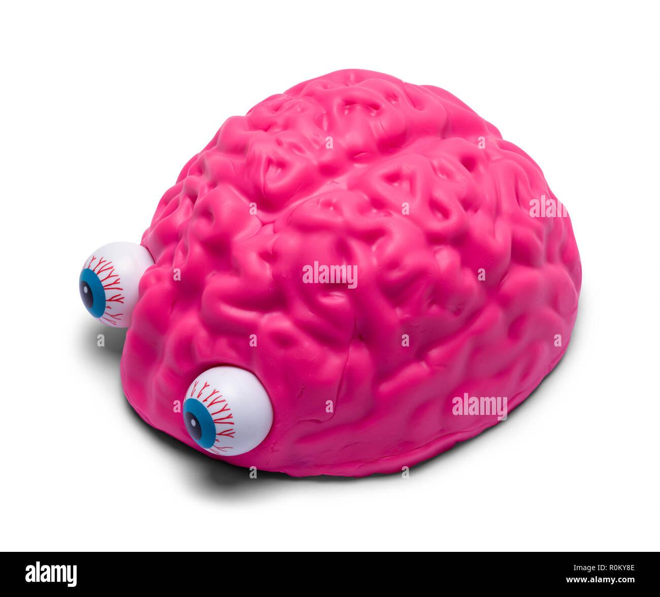 Pink Human Brain with Eyeballs Isolated on White Background. - Stock Image