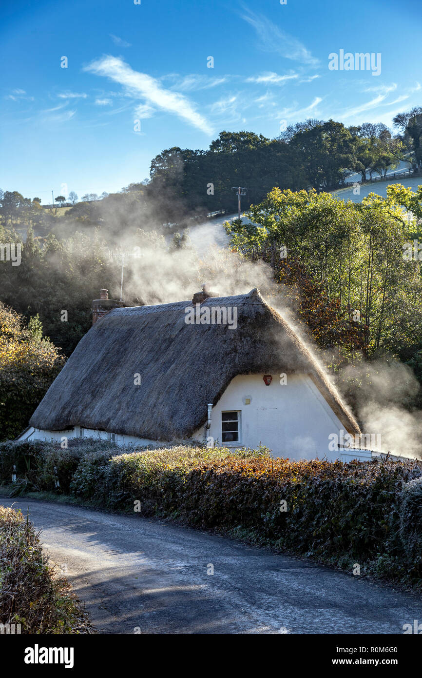 Heat rises from thatch of cottage Dartmoor National Park,humidity.moisture and humidity , water vapour in residential buildings,water-saturated air,Wi - Stock Image