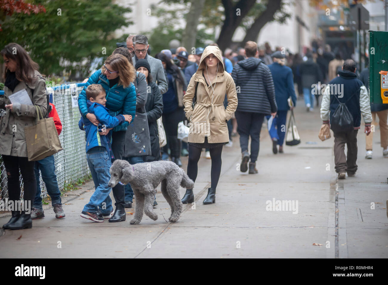 New York, USA. 6th November, 2018. Hundreds of voters wait in line to enter the PS33 polling station in the Chelsea neighborhood of New York on Election Day, Tuesday, November 6, 2018.  Credit: Richard Levine/Alamy Live News - Stock Image