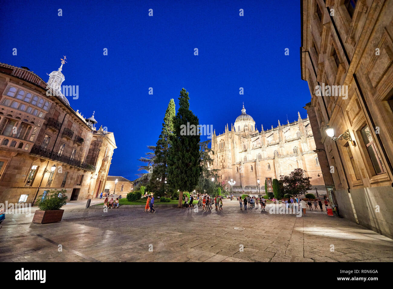 New Cathedral of Salamanca, Salamanca City, Spain, Europe - Stock Image