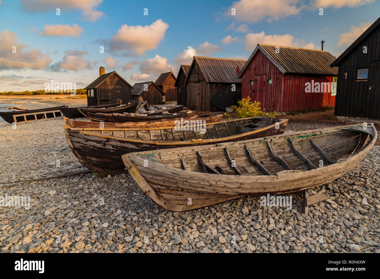 Helgumannen old fishing camp with rowing boats lying on the beach at sunset in warm evening light, Gotland, Sweden - Stock Image