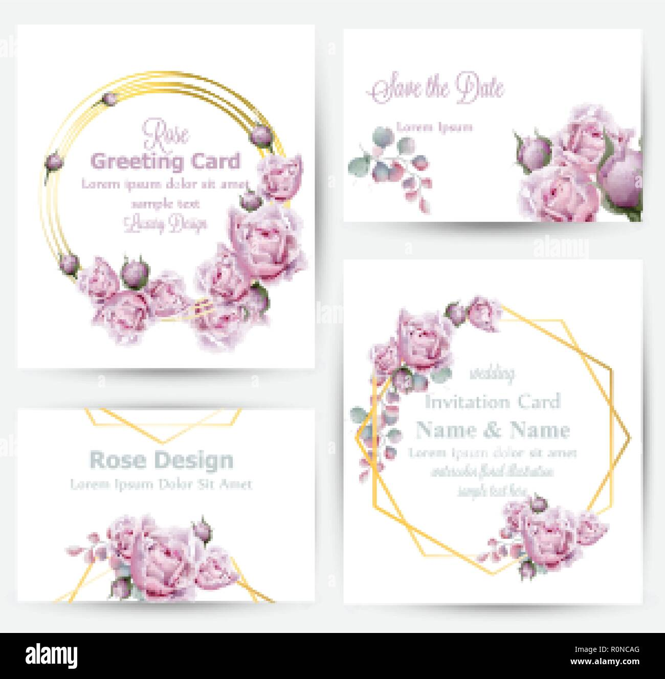 watercolor rose flowers cards set collection vector vintage greeting or buisiness card wedding invitation thank you note summer floral decor flow
