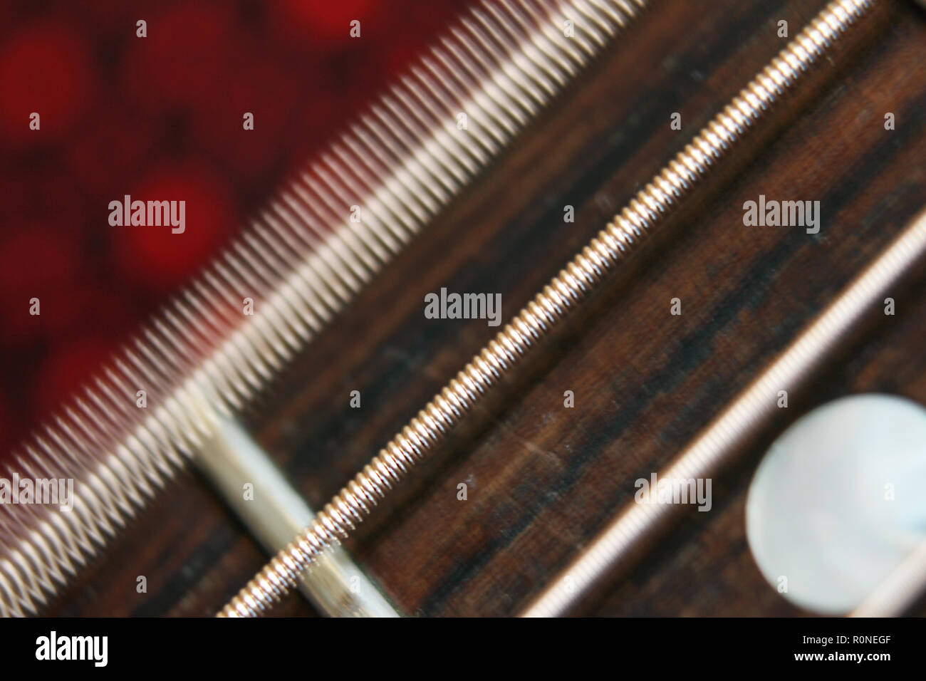 Acoustic guitar ivory fretboard with steel strings vibrating, close-up - Stock Image