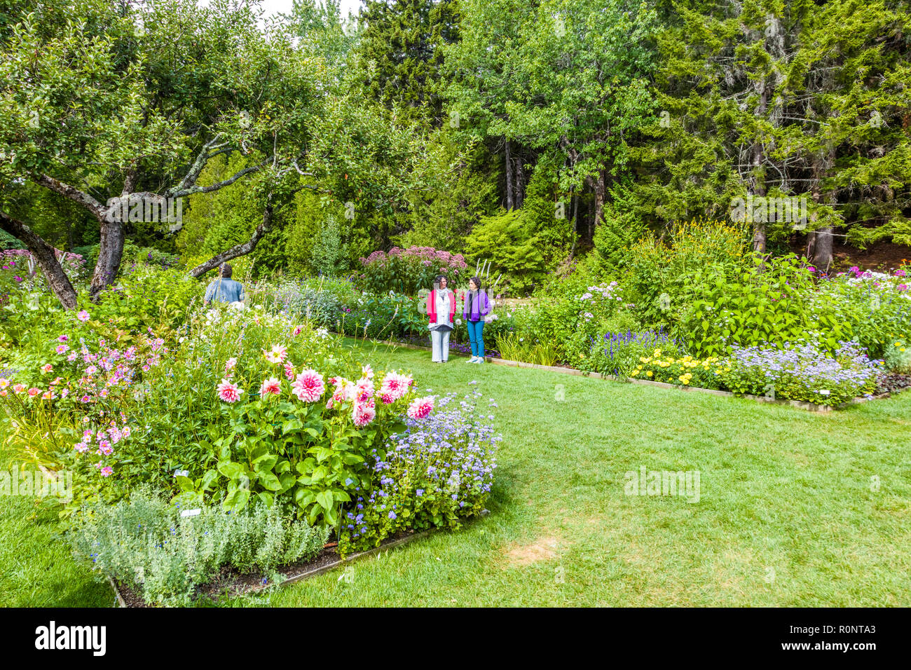 Thuya Garden in Northeast Harbor on Mount Desert Island in Maine, United States Stock Photo