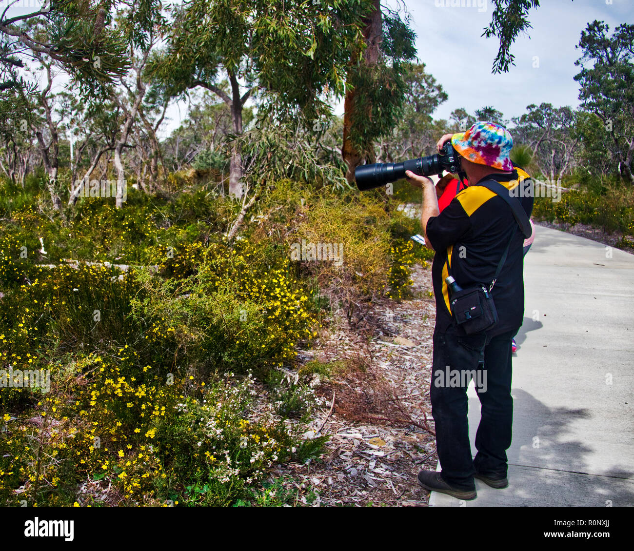 Experienced photographer brough telephoto lens to avoid invading the bush - Stock Image