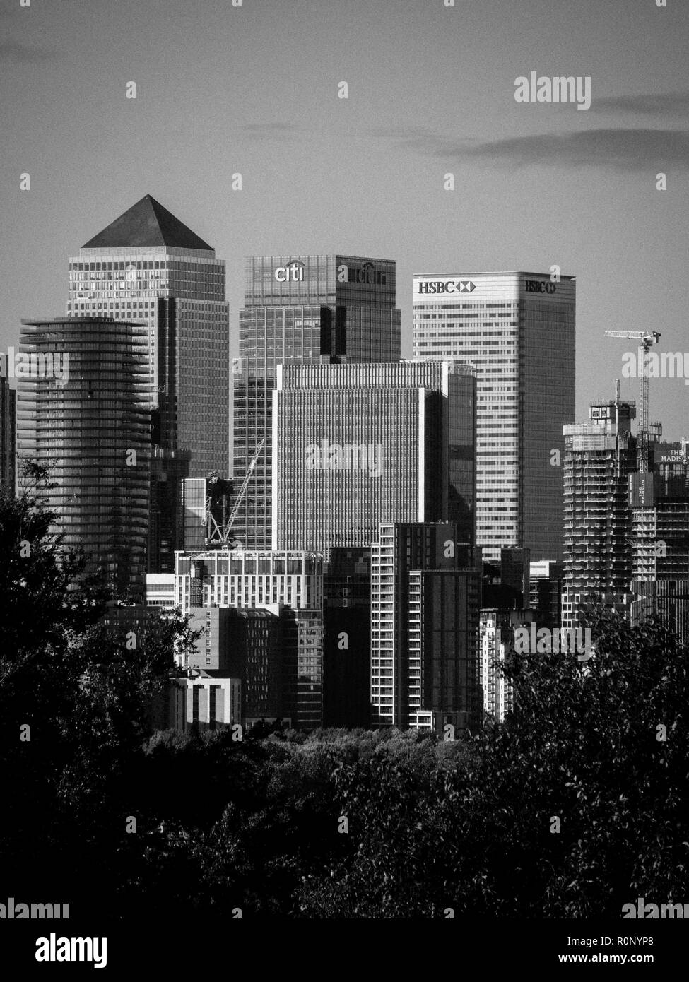 Canary Wharf on Isle of Dogs, London Docklands Viewed from, Greenwich Park, London, England, UK, GB. - Stock Image