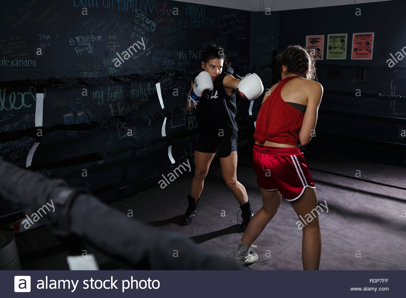 Tough female boxers training in boxing ring - Stock Image