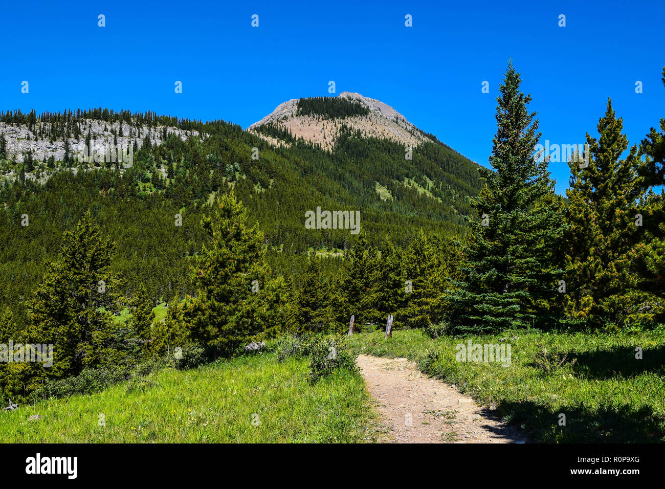 scenery from the trails in the Rocky mountains of Alberta Canada Stock Photo