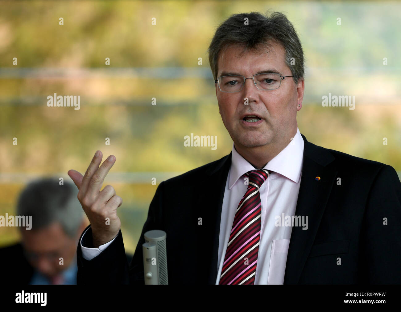 Kiel, Germany. 07th Nov, 2018. Lars Harms, faction leader of the SSW, speaks at a session of the Schleswig-Holstein state parliament. The agenda includes a current hour on digitisation at schools and a state programme for the reception of particularly vulnerable refugees. Credit: Carsten Rehder/dpa/Alamy Live News - Stock Image