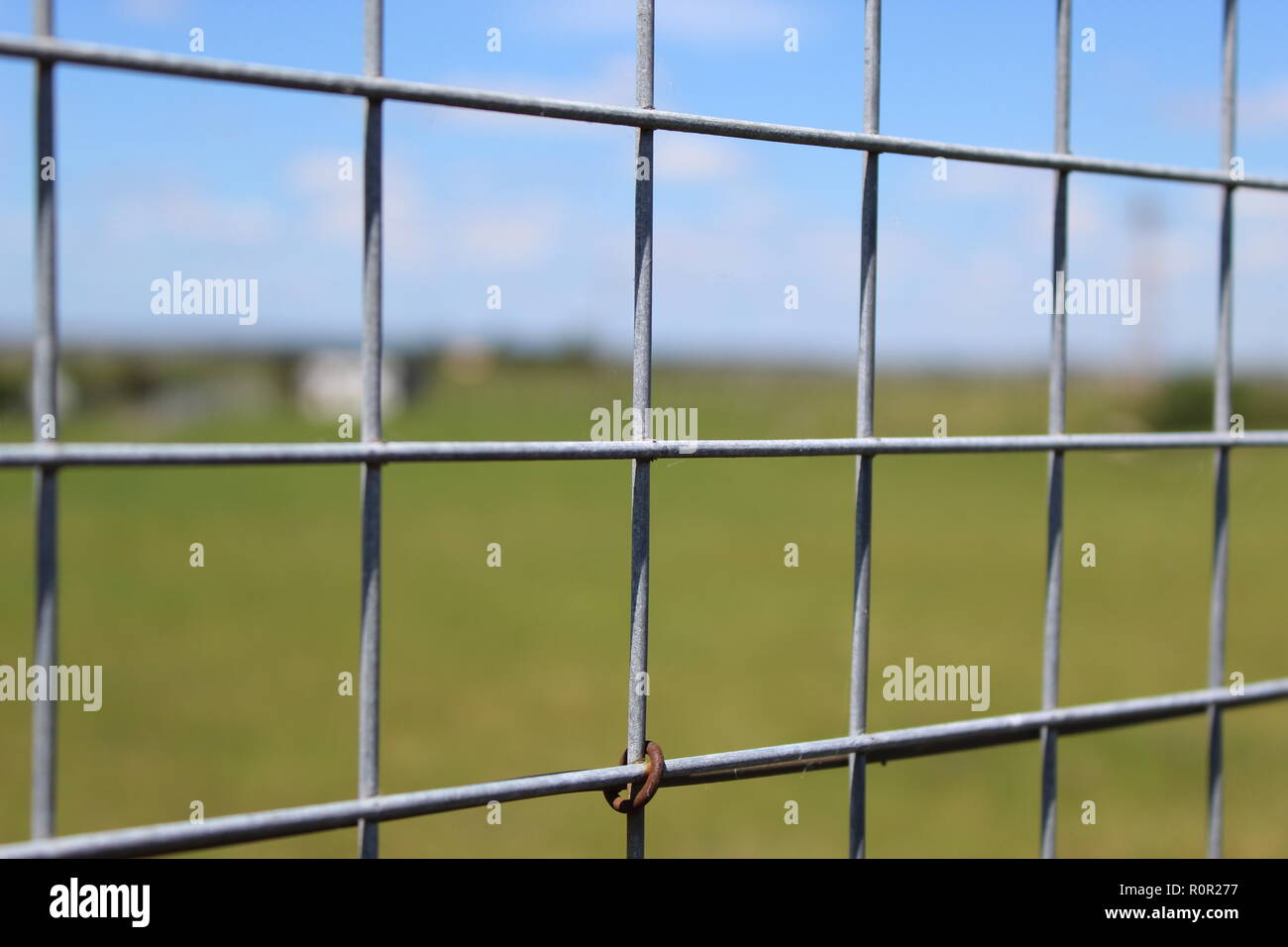 Wire grid separating the field - Stock Image