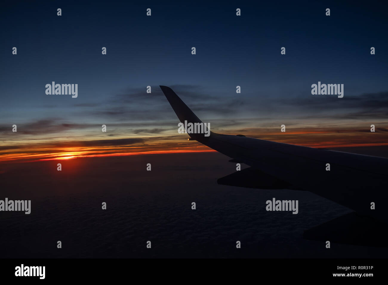 flying in dawn - Stock Image