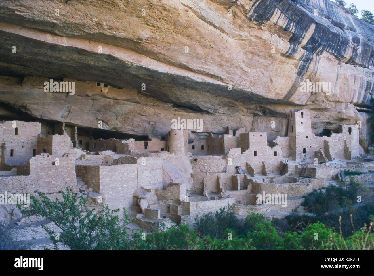 Cliff Palace, multistory Anasazi/Puebloan city at Mesa Verde National Park, Colorado. Photograph - Stock Image