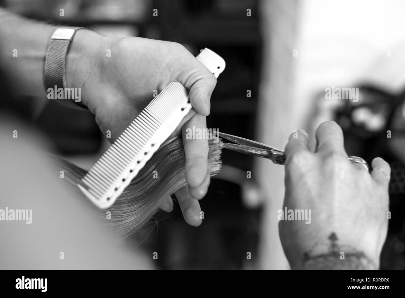 hair cutting in the salon hairdresser, scissors close-up in the hands of the master. - Stock Image