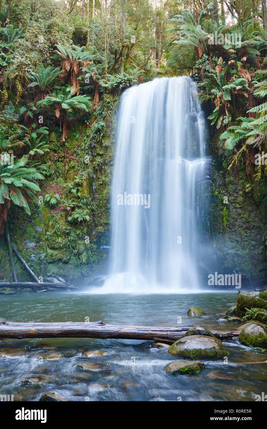 Beauchamp Falls in the rainforest, Great Otway National Park, Otways Region, Australia - Stock Image