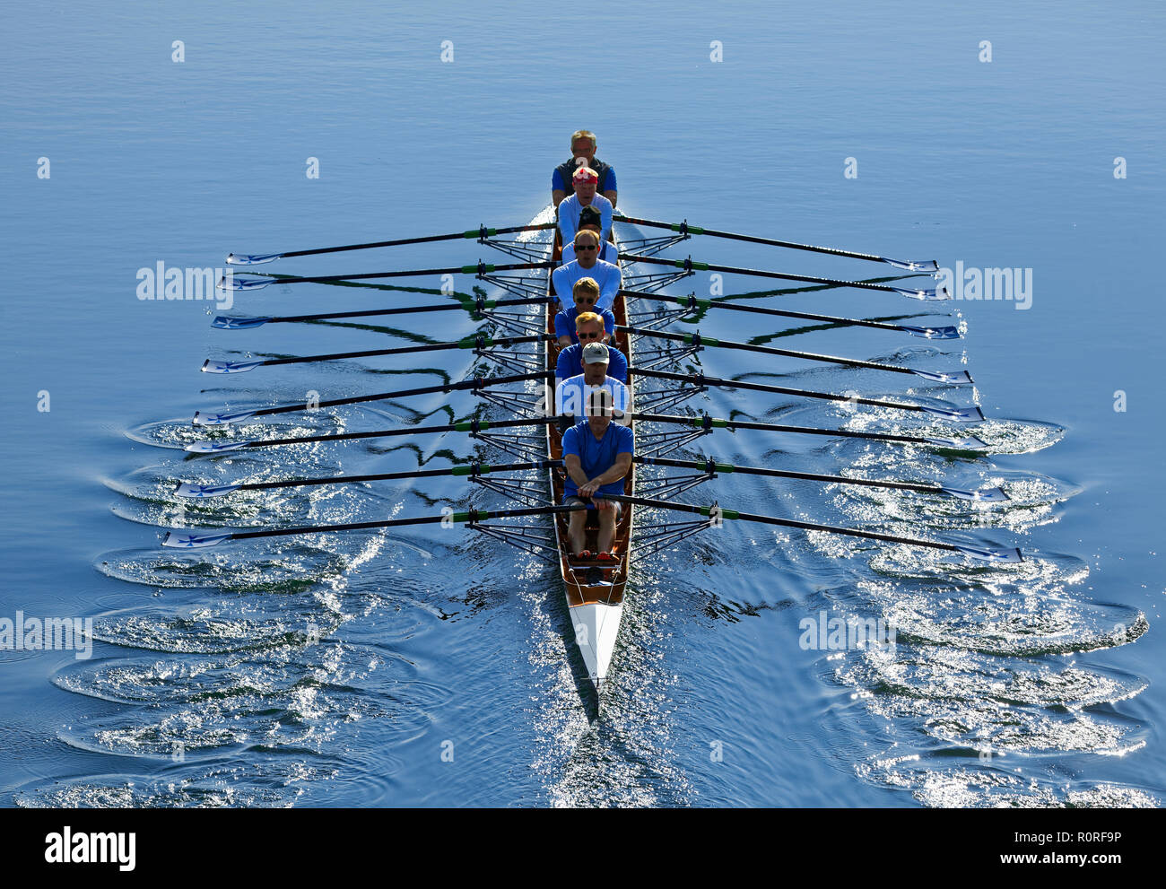 Rowers rowing in rowing boat, eight, Main Danube Canal, near Nürnberg-Katzwang, Middle Franconia, Franconia, Bavaria, Germany - Stock Image