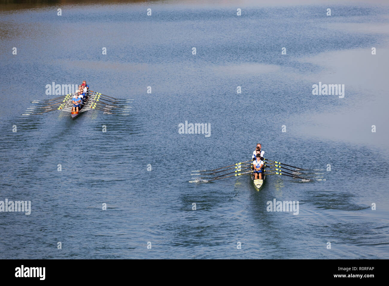 Rowers rowing in rowing boats, left eight and four without helmsman, Main Danube Canal, near Nürnberg-Katzwang - Stock Image
