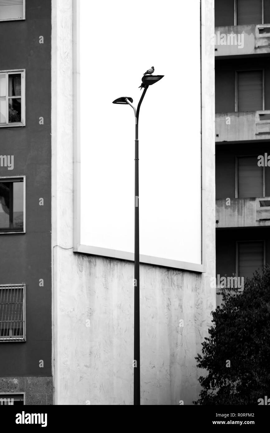 Bird on a lamp post in front of an empty billboard on the facade of the palace Stock Photo