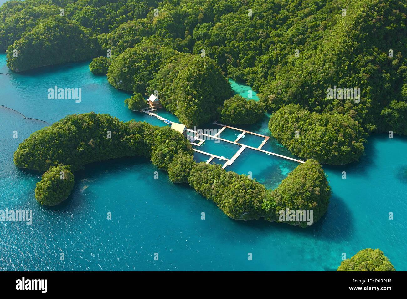 Luftaufnahme, Fischfarm am Rand der Mangroven, Palau, Mikronesien | Fish farm at mangroves, aerial view, Palau, Micronesia - Stock Image