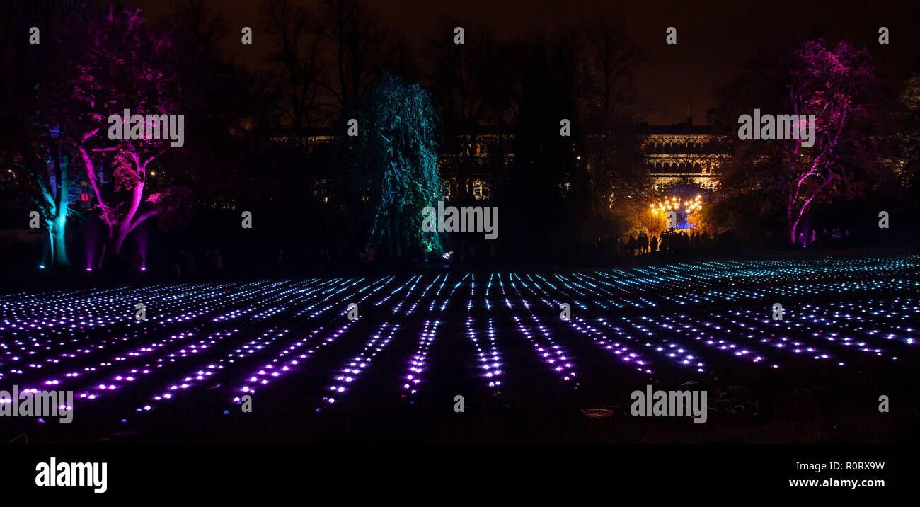 GlasGLOW, a winter event in which Glasgow Botanic Gardens are lit up at night. Looking over towards Grosvenor Terrace, off Great Western Road. - Stock Image