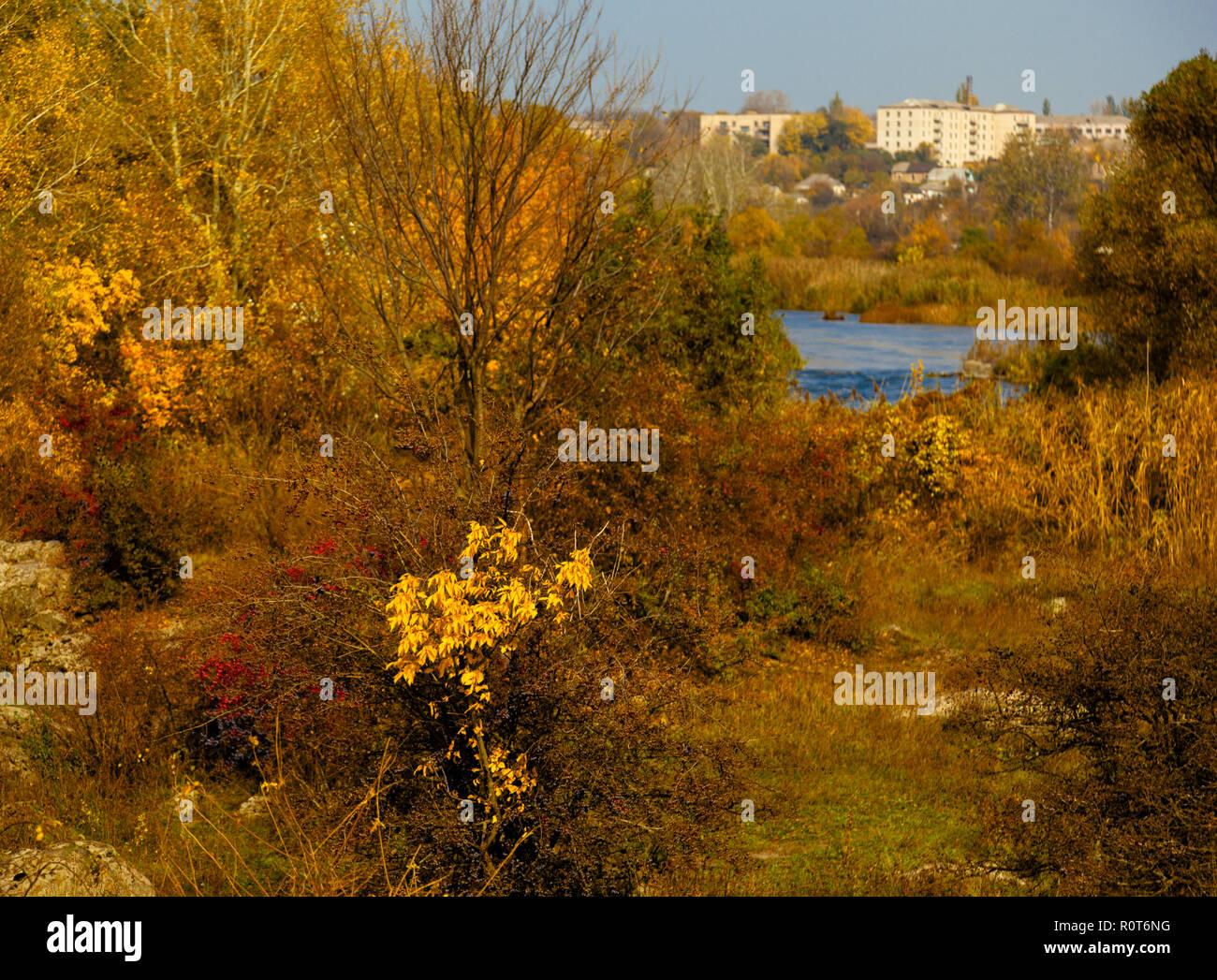 panorama of the stony river bank golden autumn Stock Photo