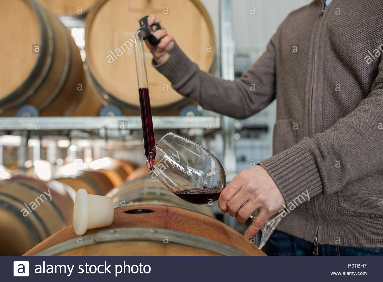 Winemaker checking wine in barrels at vineyard - Stock Image