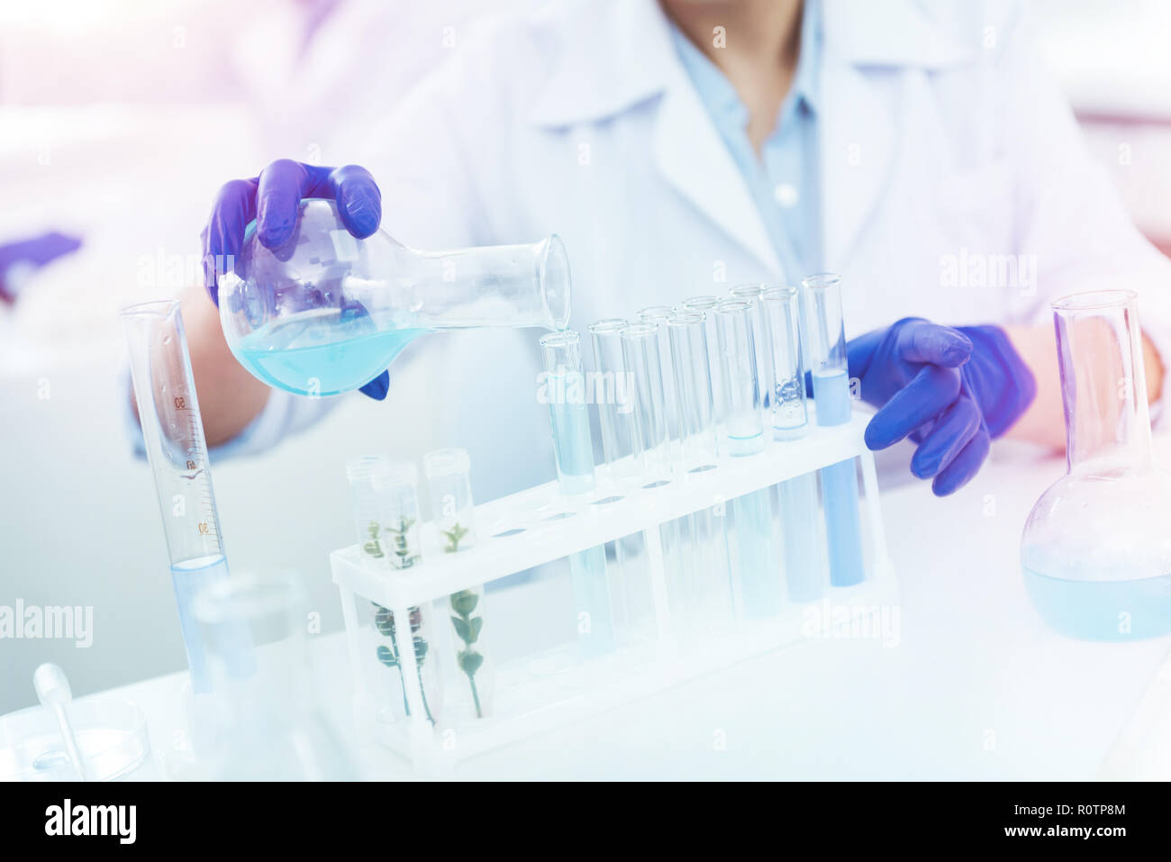 Close up of test tubes being in the rack - Stock Image
