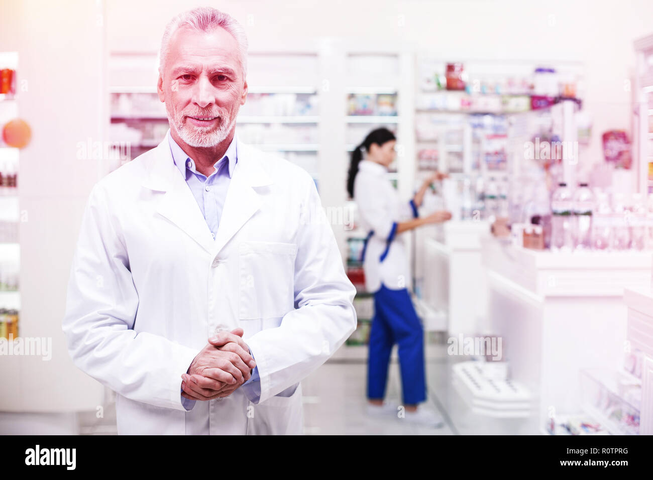 Professional wise pharmacists working in a drugstore - Stock Image
