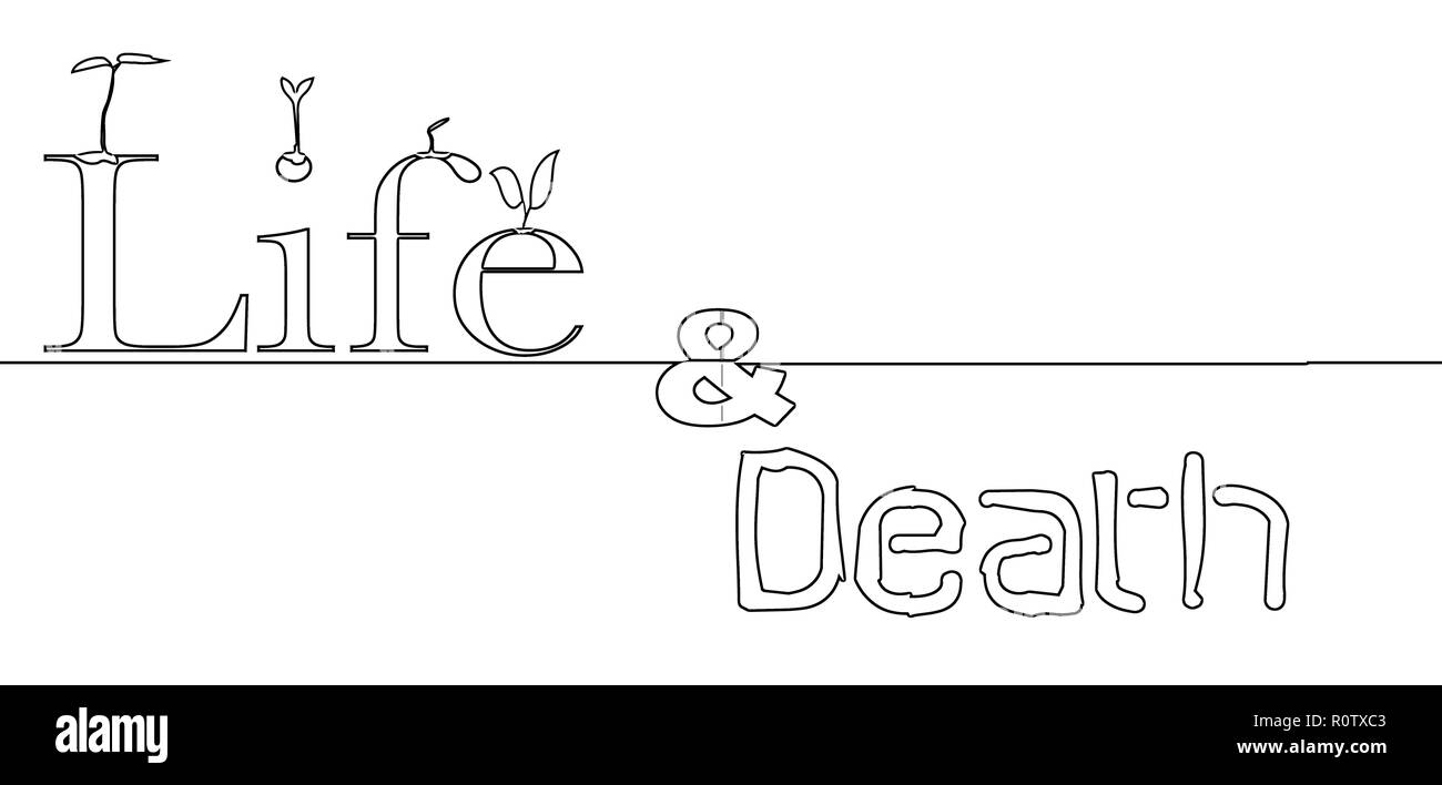 Seeds Germinating Cut Out Stock Images Pictures Alamy Bean Seed Germination Diagram The Words Life And Death In Outline With Image