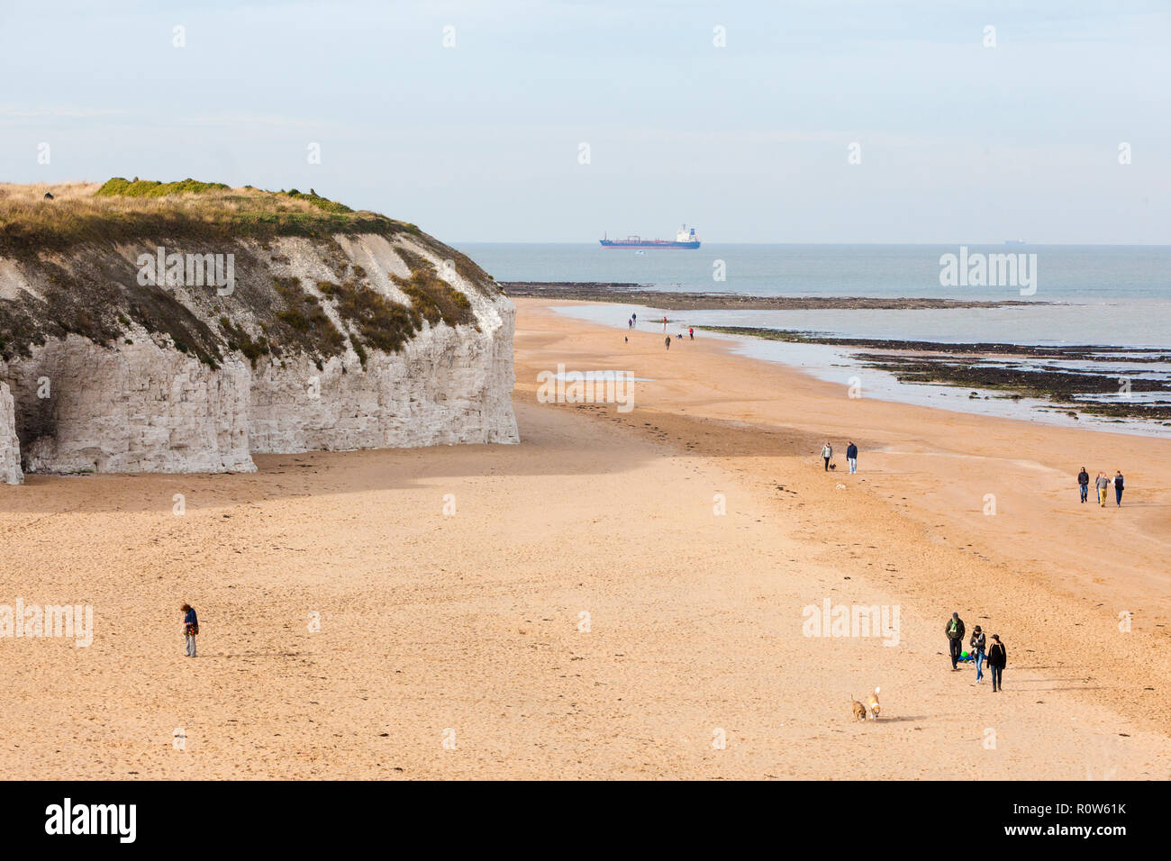 Walking the dogs on the beach at Botany Bay, near Broadstairs, Kent, UK, autumn. Stock Photo