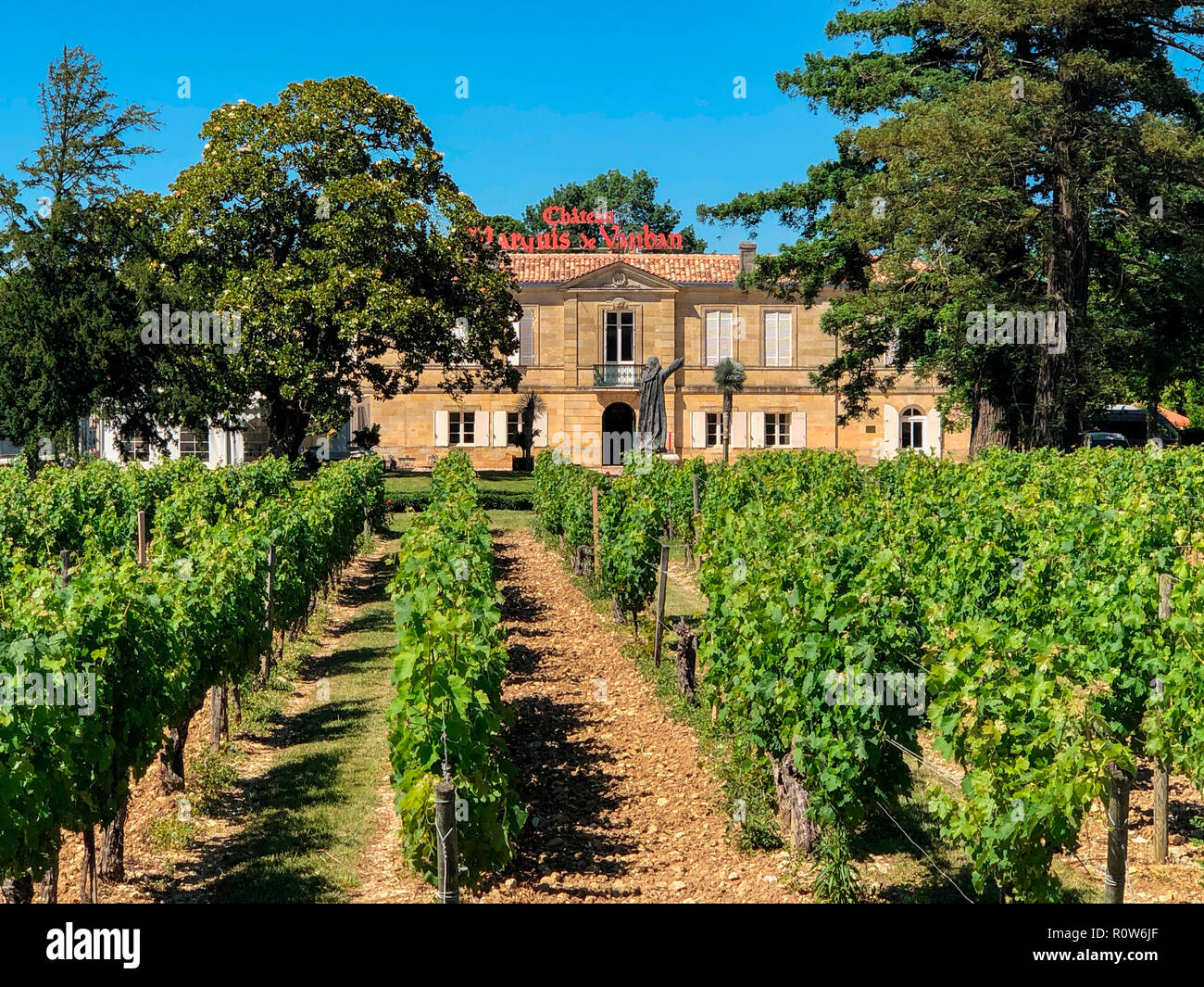 Vineyards at Chateau Marquis de Vaban near the town of Blaye in Nouvelle-Aquitaine region of southwest France. Stock Photo