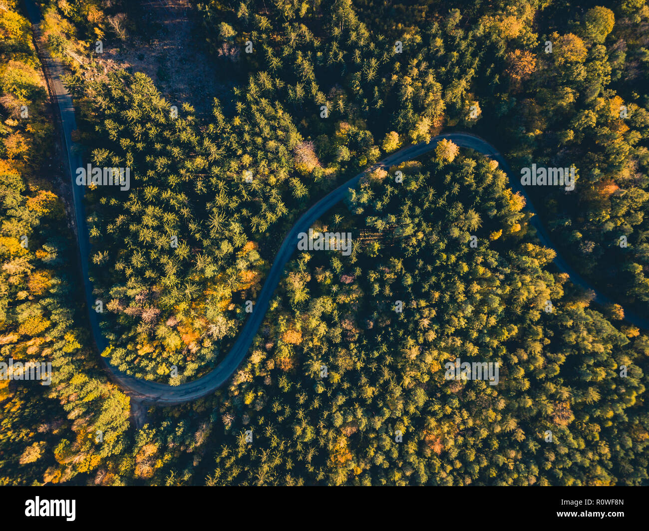 Aerial view of road in the autumn forest, view from above, drone point of view. Inspiring autumn season landscape background. - Stock Image