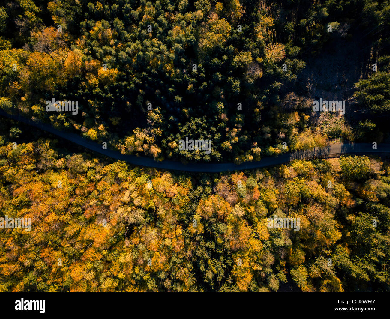 Aerial view of road in the autumn forest, from above view, drone point of view. Inspiring autumn season landscape background. - Stock Image