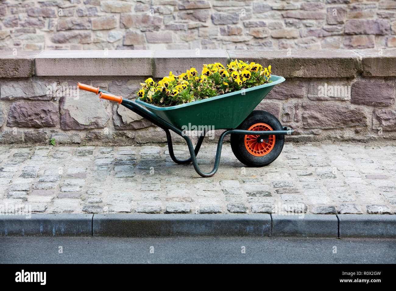 Flowers in a wheelbarrow, Bad Karlshafen,  Weser Uplands, Hesse, Germany, Europe - Stock Image