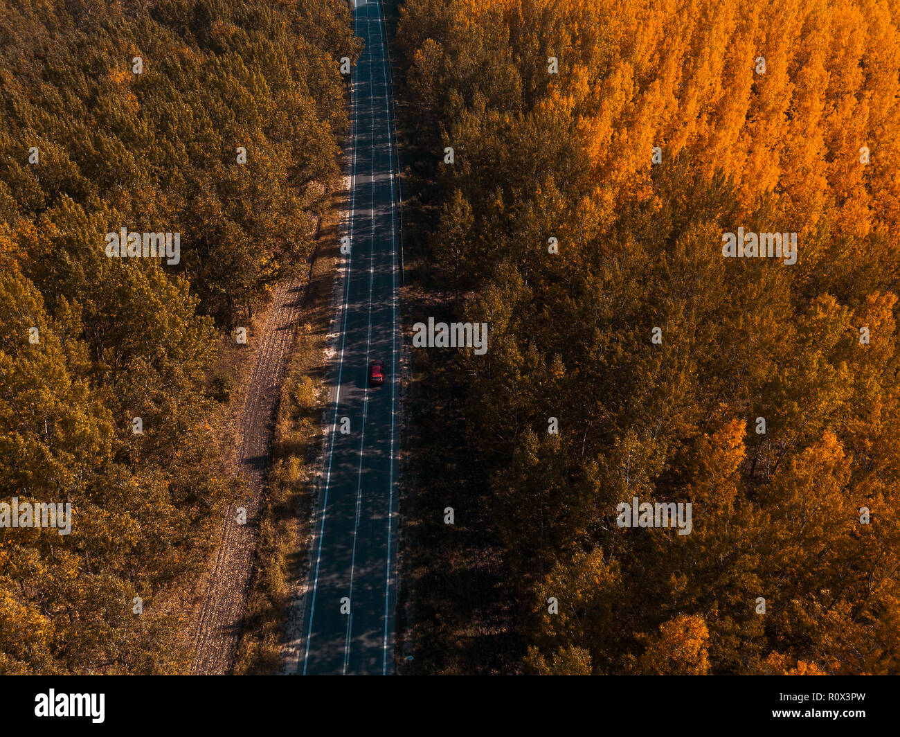Aerial view of car on road through forest in autumn, drone point of view directly above - Stock Image