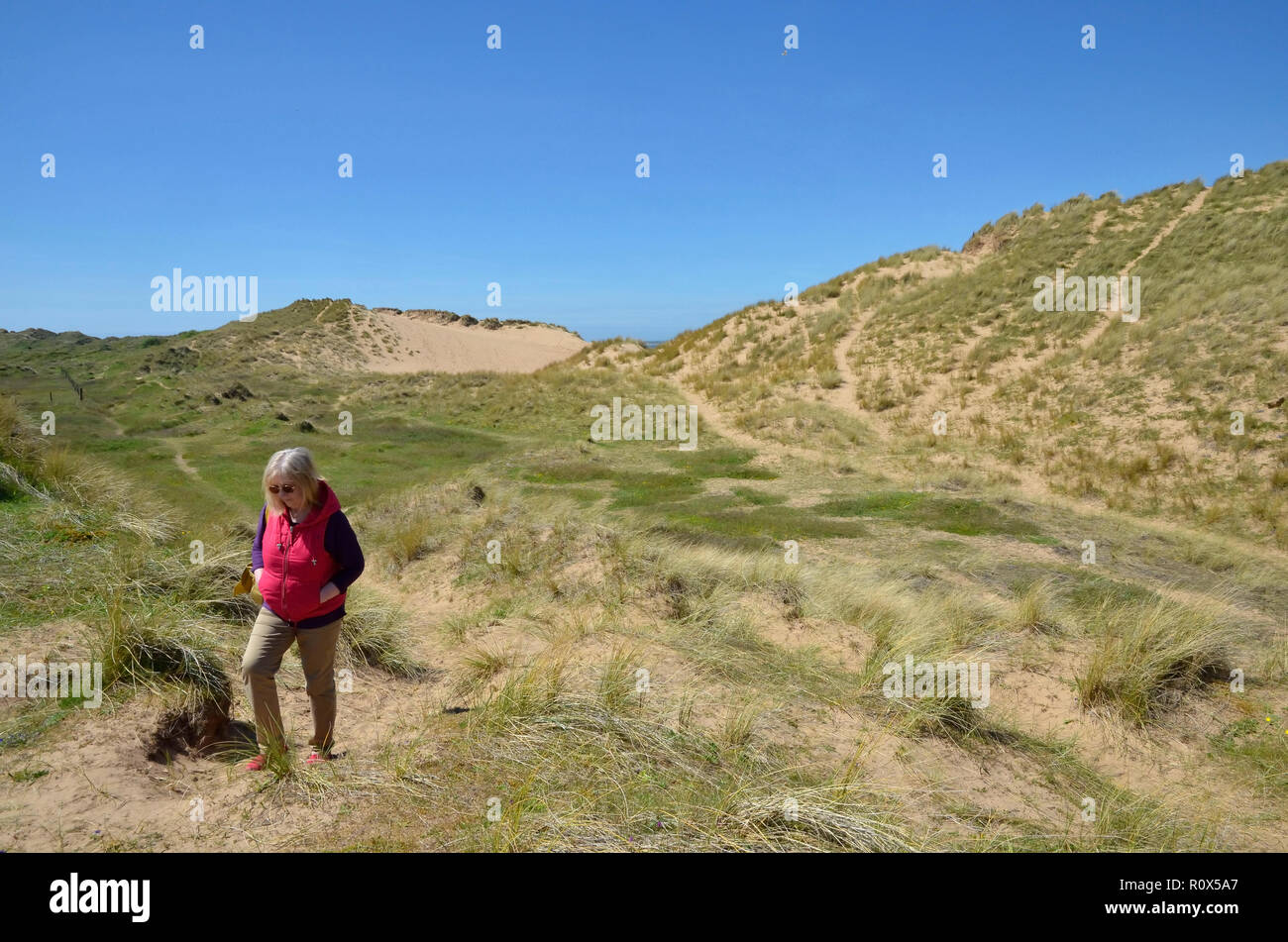 Sandscale Haws is a National Nature Reserve in Furness, Cumbria Stock Photo