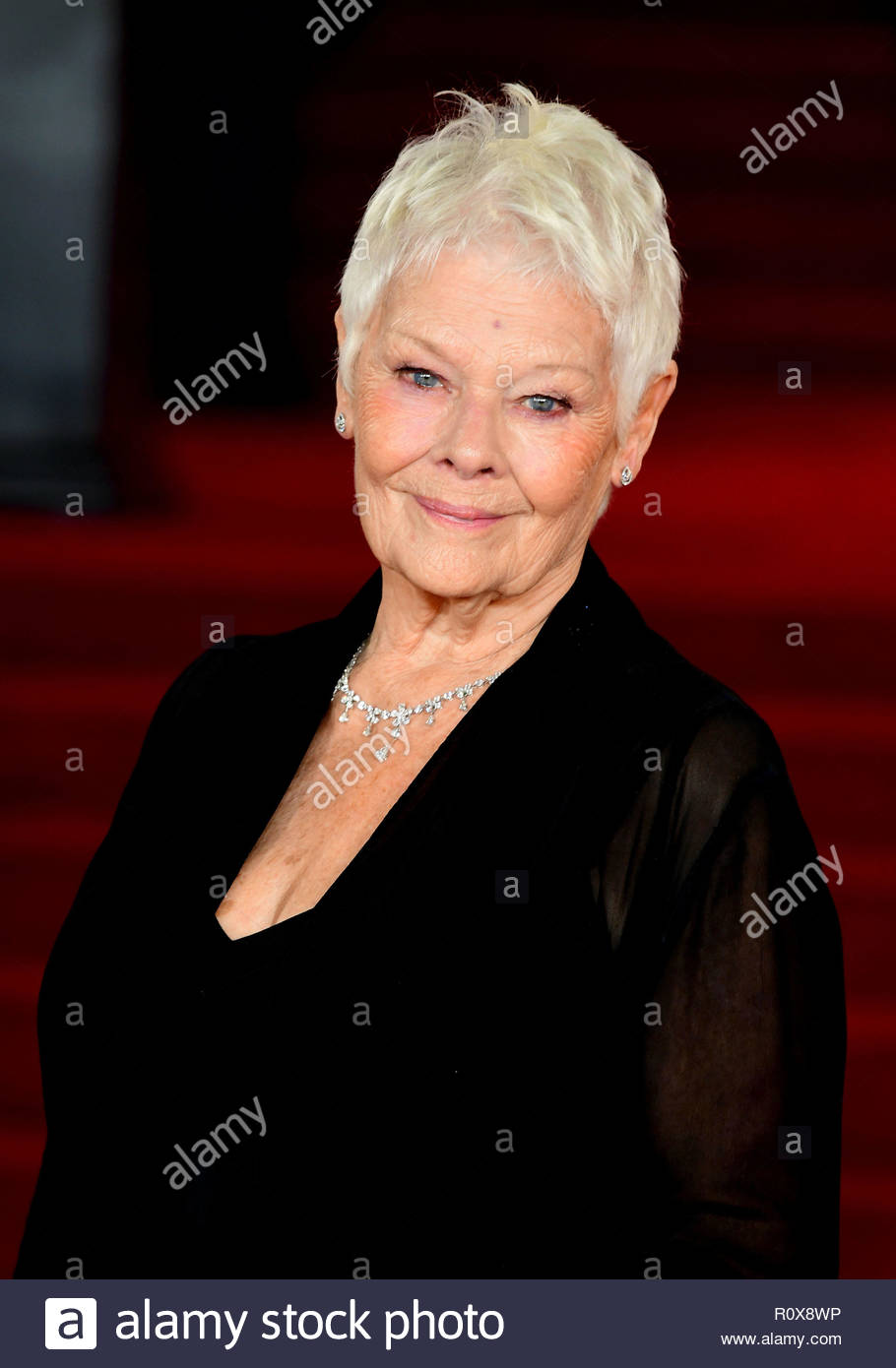 File photo dated 2/11/2017 of Dame Judi Dench who has been named as the new patron of London's Omnibus Theatre, to mark the venue's fifth anniversary. ASSOCIATION Photo. Issue date: Wednesday November 7, 2018. The actress joins members of the arts and theatrical community, including Sir Michael Gambon and the Old Vic's artistic director Matthew Warchus, as a patron for the off-West End theatre in Clapham, south-west London. See PA story ARTS Dench. Photo credit should read: Ian West/PA Wire - Stock Image