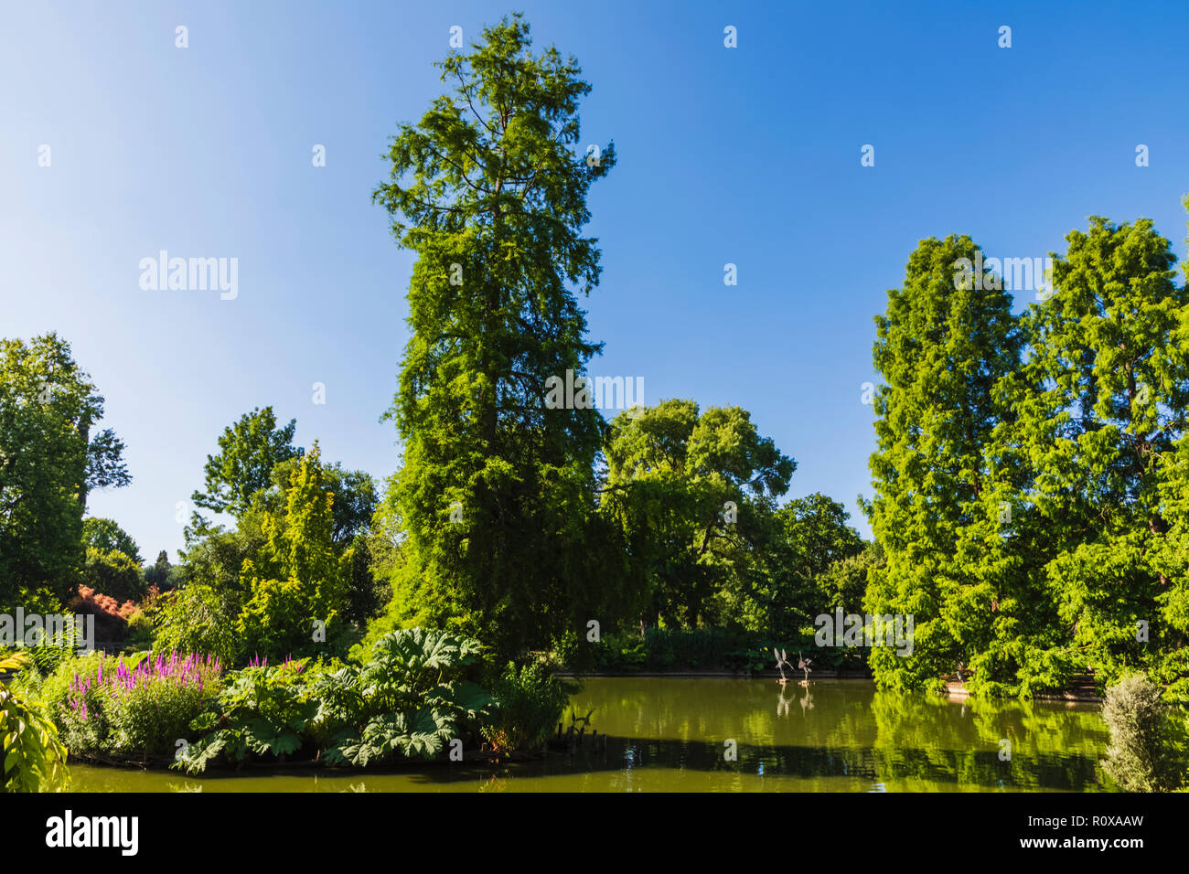 England, Surrey, Guildford, Wisley, The Royal Horticultural Society Garden, Seven Acres Pond and The Japanese Pagoda - Stock Image