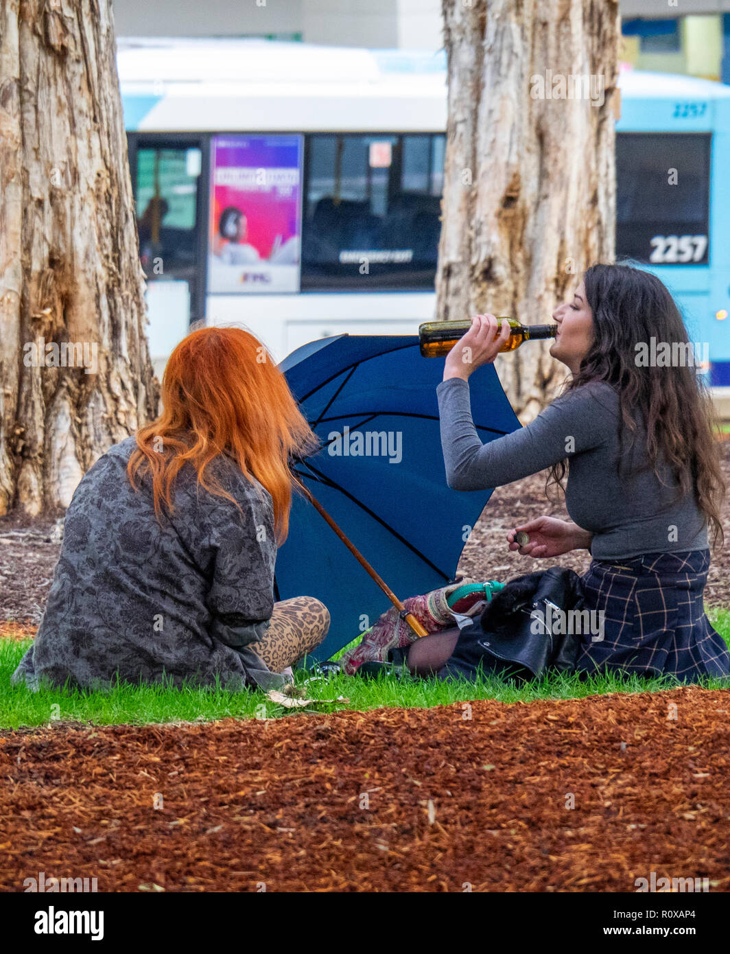 Two young female adults sitting and drinking from a beer bottle in Hyde Park Sydney NSW Australia. - Stock Image