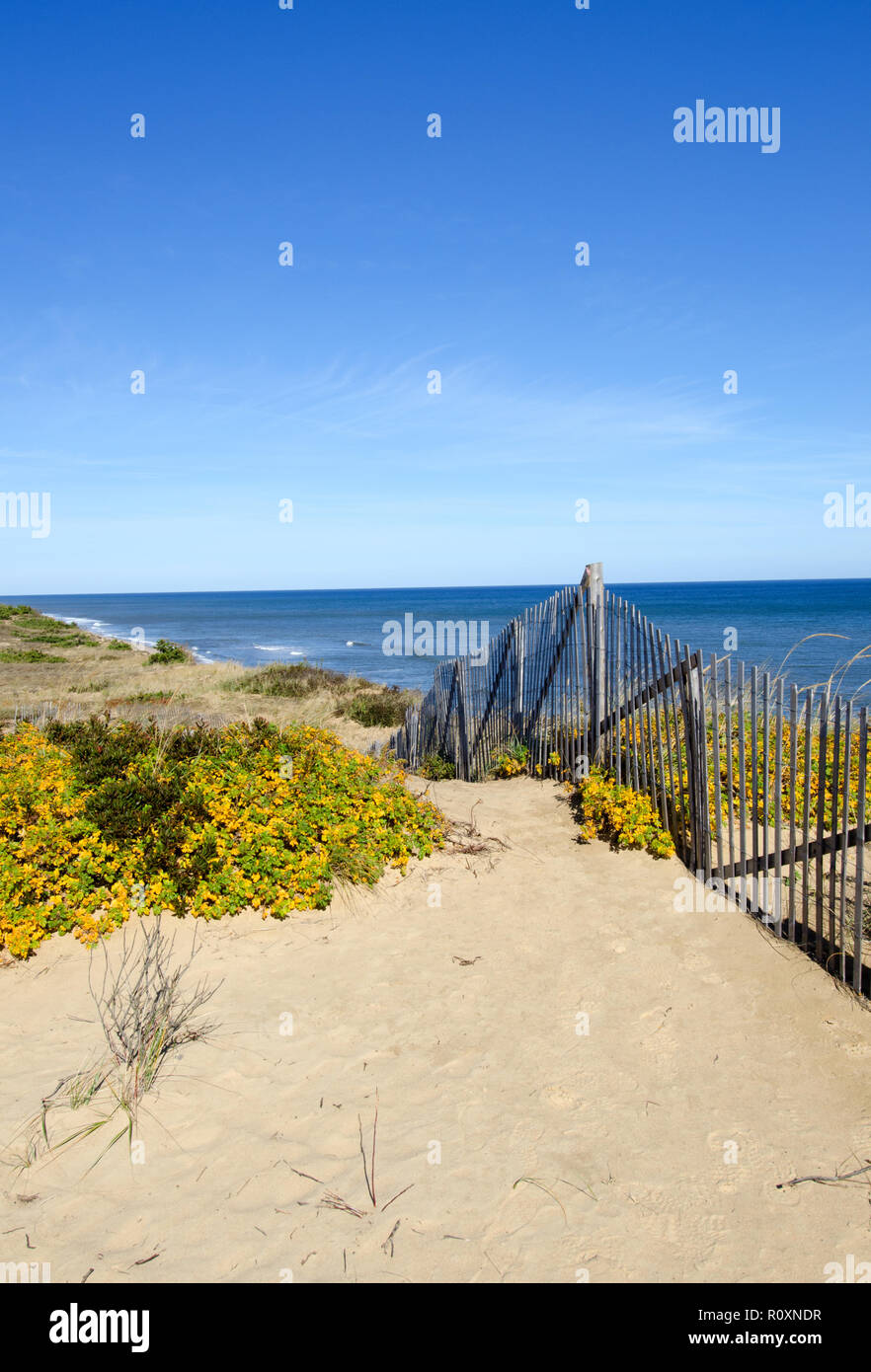 Scenic view at Marconi Station on the Cape Cod National Seashore in Wellfleet, Massachusetts with dunes, ocean and a clear, blue sky - Stock Image