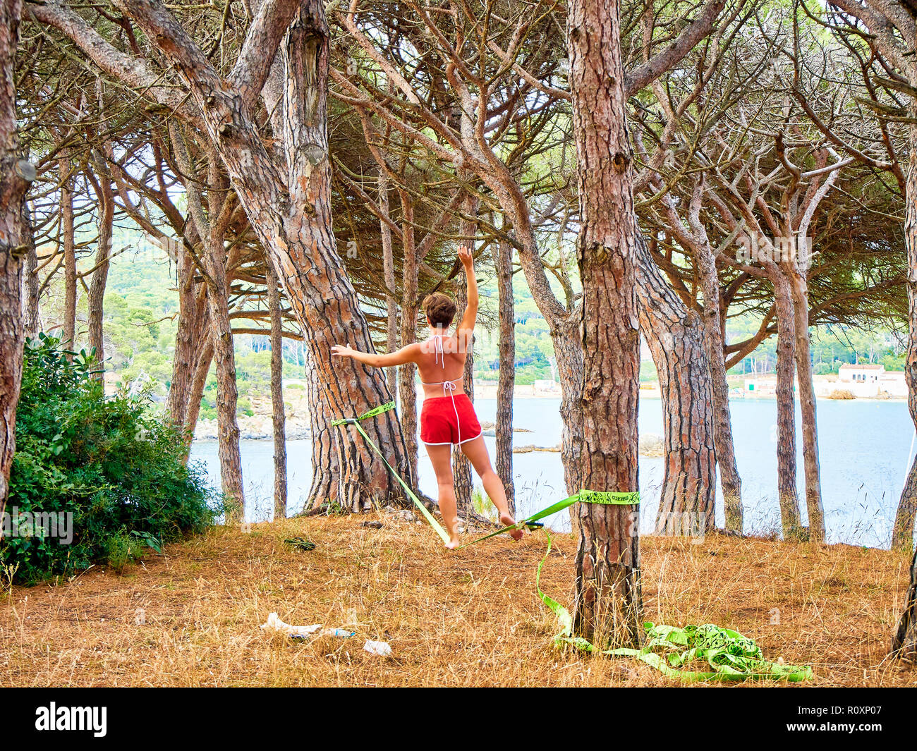 A young woman practicing Slacklining with a webbing tensioned between two pines of a Mediterranean forest in Catalonia, Spain. - Stock Image