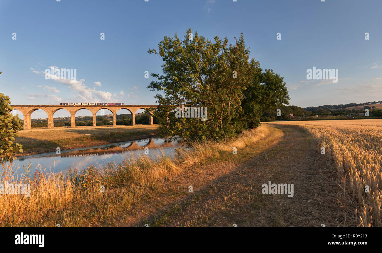 Northern rail sprinter train crossing  Wharfedale viaduct over the River Wharf on the Leeds - Harrogate line on a summer evening - Stock Image