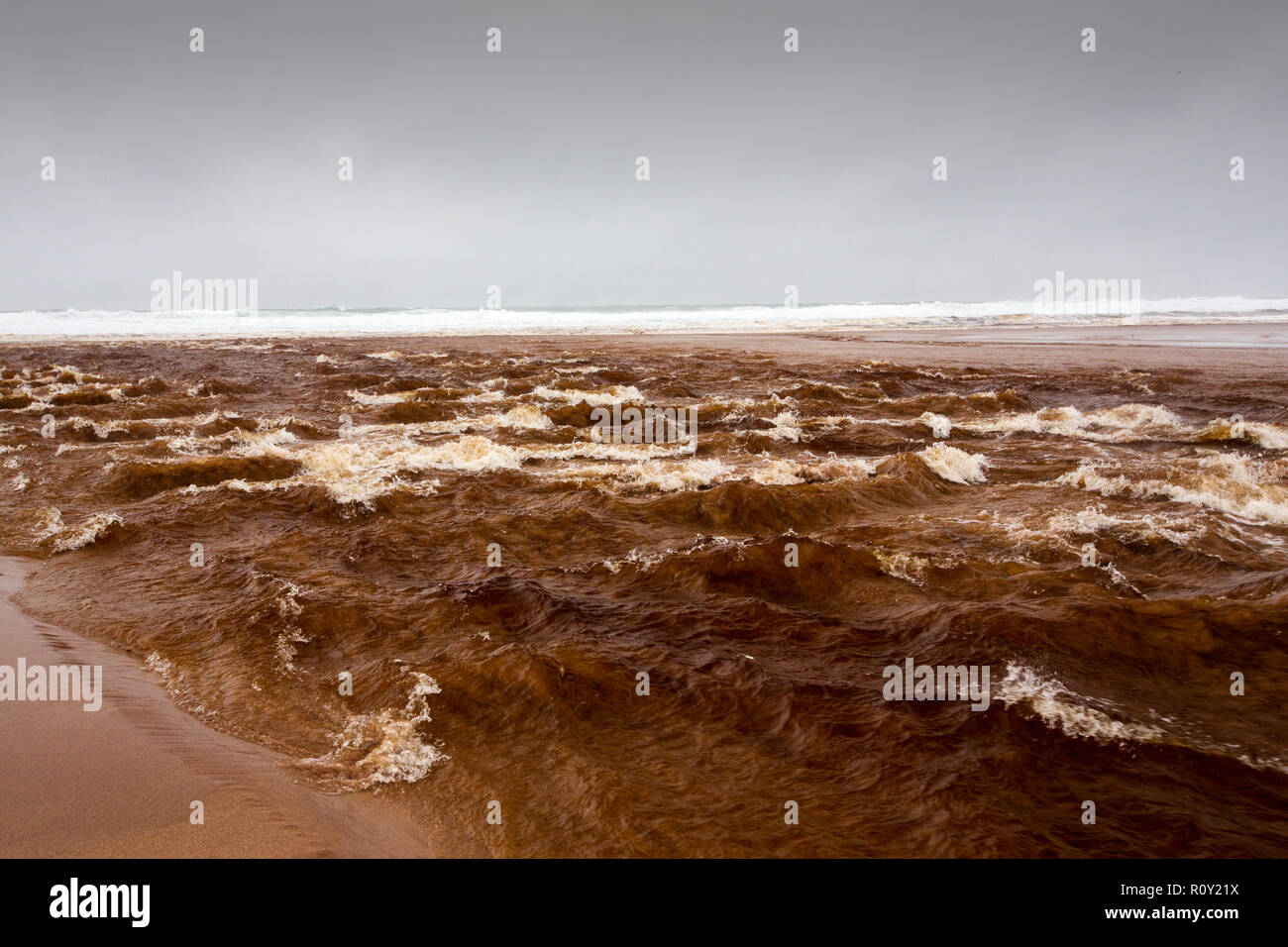 The outflow of Sandwood loch in flood conditions crossing the beach at Sandwood Bay, Sutherland, Scotland, UK, with the water heavily stained by peat. - Stock Image