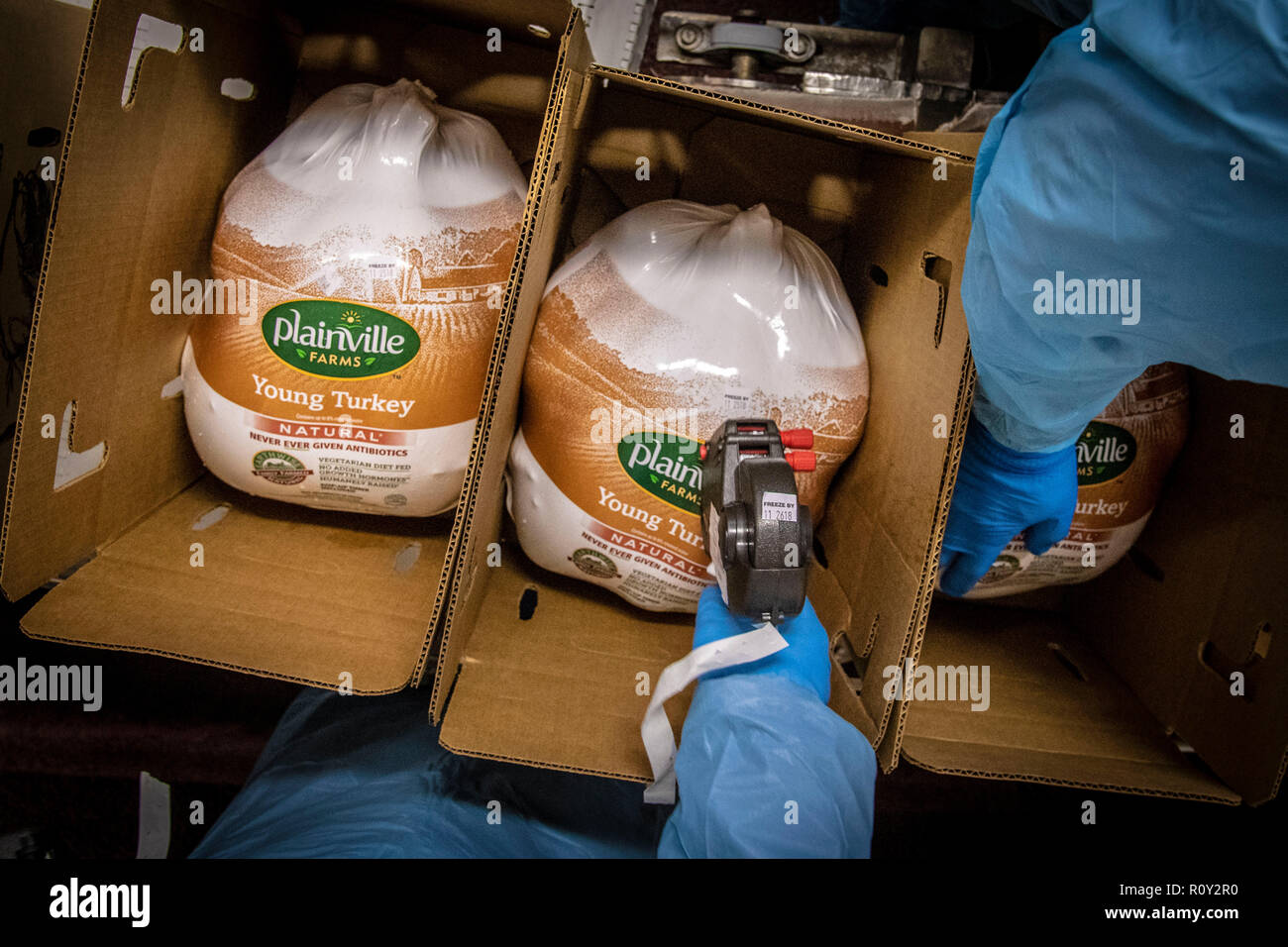Thanksgiving turkeys are packed and graded by USDA inspectors at Plainville Farms Turkey Processing plant October 31, 2018 in New Oxford, Pennsylvania. - Stock Image