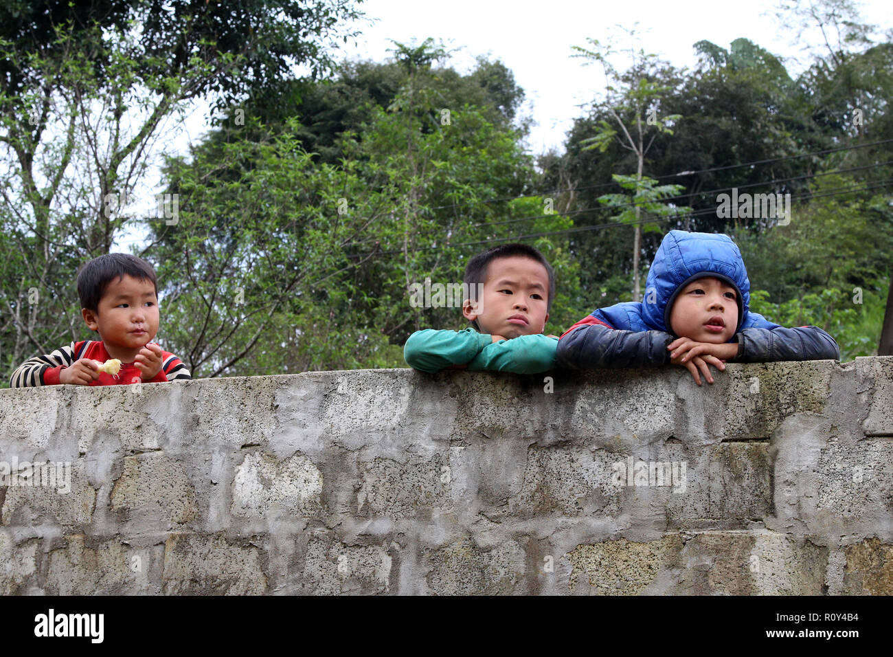 Three young boys peer over a concrete block wall, Ban Pho village, Vietnam - Stock Image
