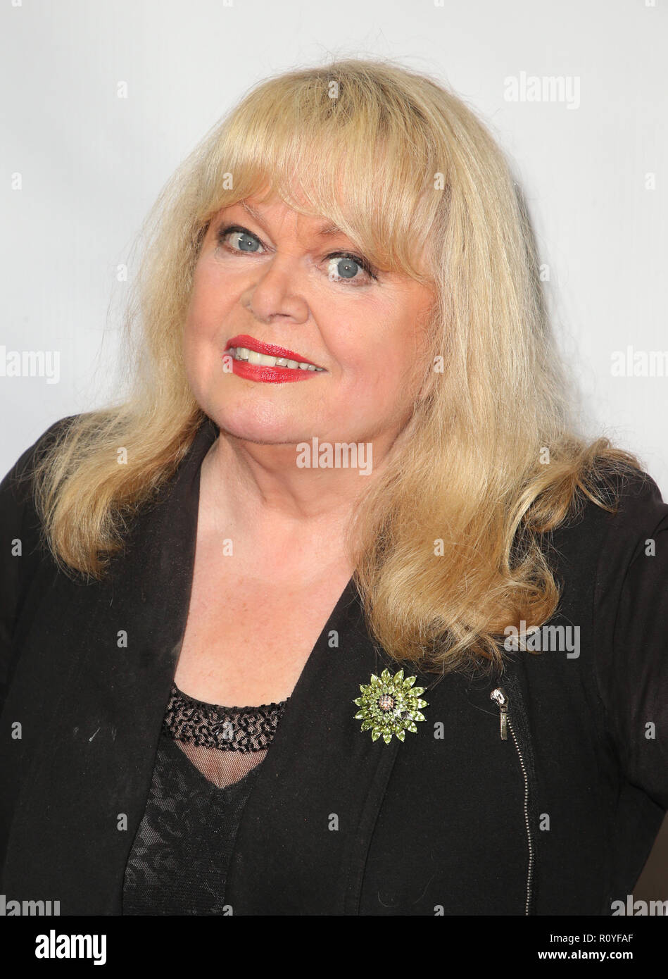 Sally Struthers Breaks Leg, Will Miss Rest of 'Annie' in Maine
