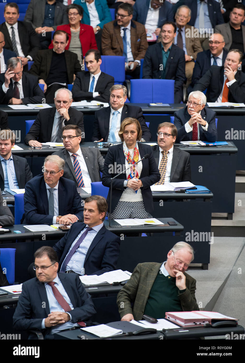 Berlin, Germany. 08th Nov, 2018. Beatrix von Storch (AfD) stands during the plenary session in the German Bundestag after an interposed question in her parliamentary group. Topics of the 61st session of the 19th legislative period include the pension package introduced by the Federal Government, additional safe countries of origin, tax relief for families, changes in asylum law, accelerated traffic planning and a current hour on the INF (Intermediate Range Nuclear Forces) nuclear disarmament treaty. Credit: Bernd von Jutrczenka/dpa/Alamy Live News - Stock Image