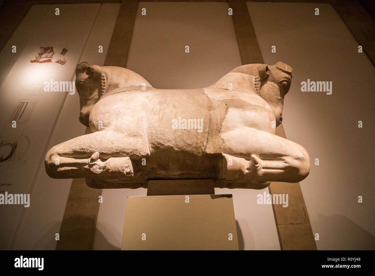 Beirut Lebanon. 8th November 2018. 'Capital with Bull Protomes, 5th c. AD. Sidon. A few foreign visitors trickle to visit the National Museum of Beirut which houses antiquities from the Phoenician, Roman, Byzantine and Ottoman Periods Credit: amer ghazzal/Alamy Live News - Stock Image