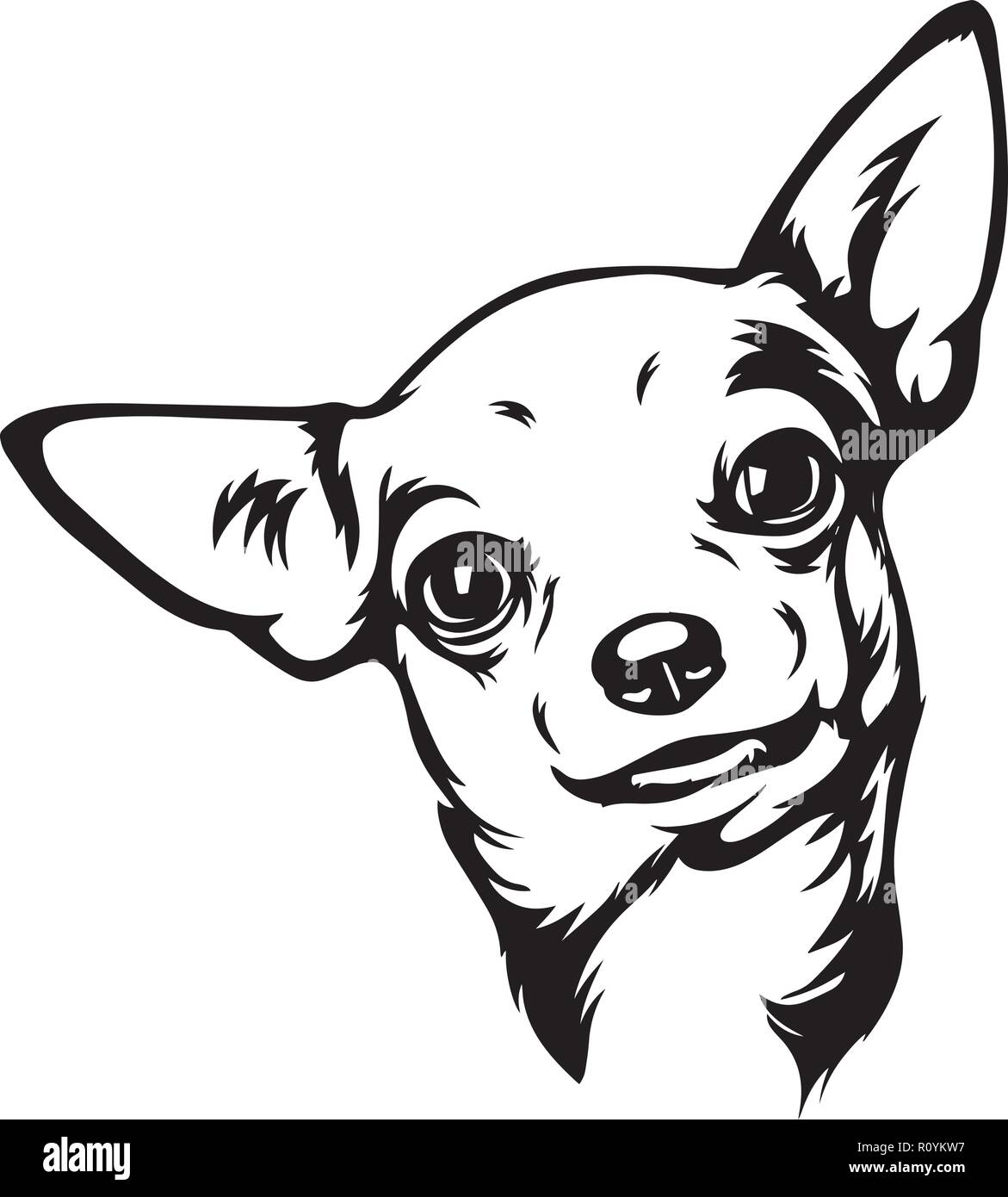 Chihuahua Dog Breed Head Isolated Pedigree Pet Portrait Smiling Happy Puppy Face Animal Cartoon Illustration Portrait Art Artwork Cute Design Stock Vector Image Art Alamy